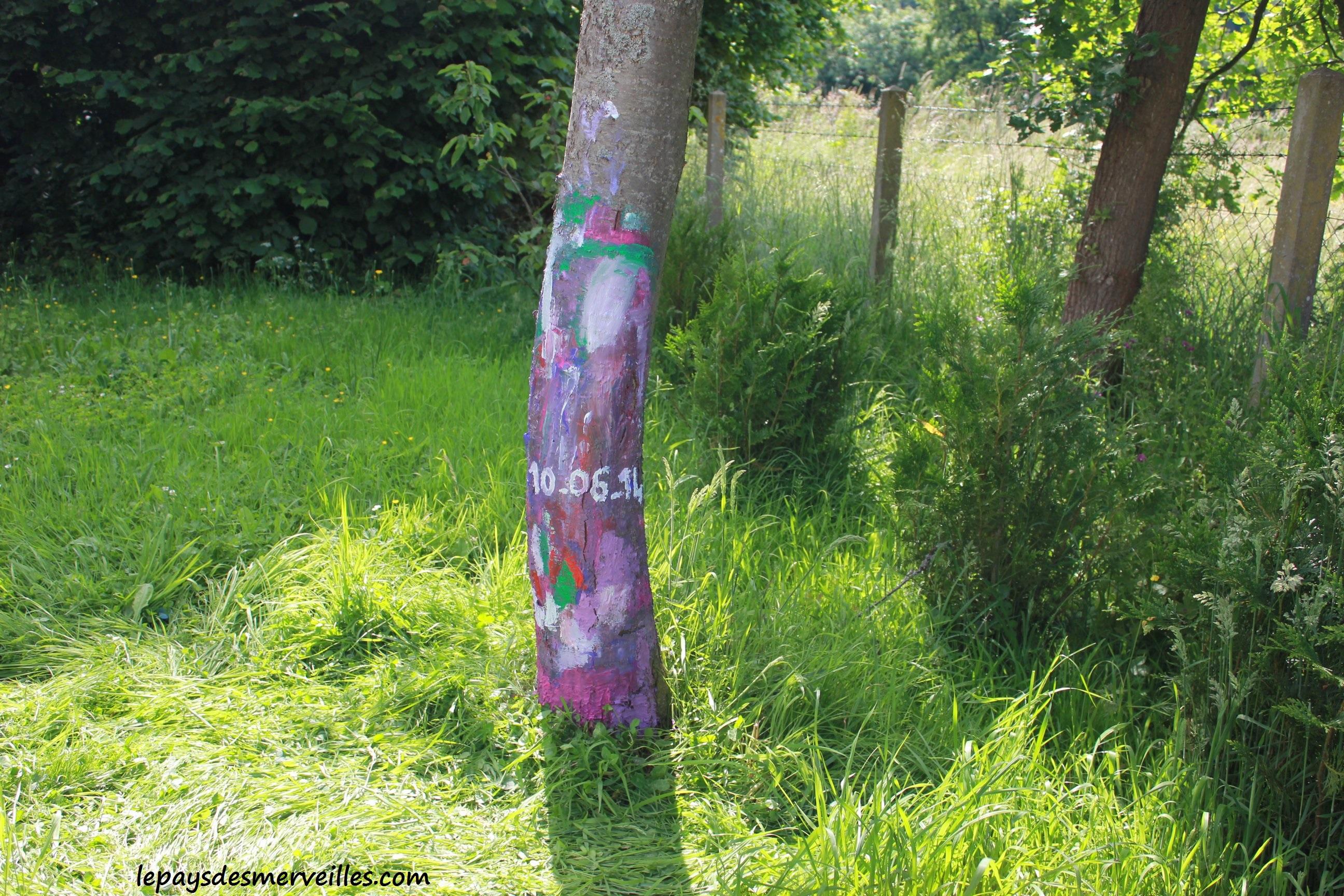 Mettre de la couleur dans le jardin en peignant un arbre for Peinture phosphorescente exterieur