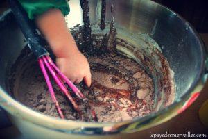 gateaunesquikchocolat (1)