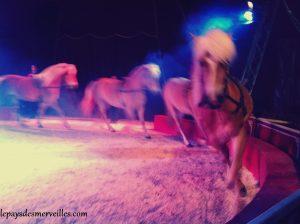 cirque (2)