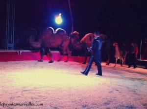 cirque (4)