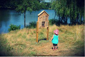 Pique nique au lac 290713 (3)