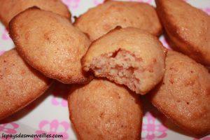 Madeleine aux biscuits roses de reims (2)