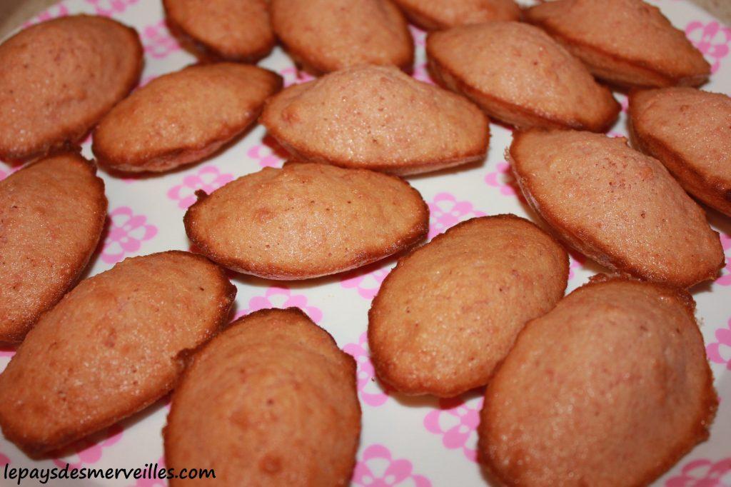 Madeleine aux biscuits roses de reims (4)