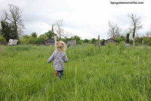 Séjour ferme Calvados (16)