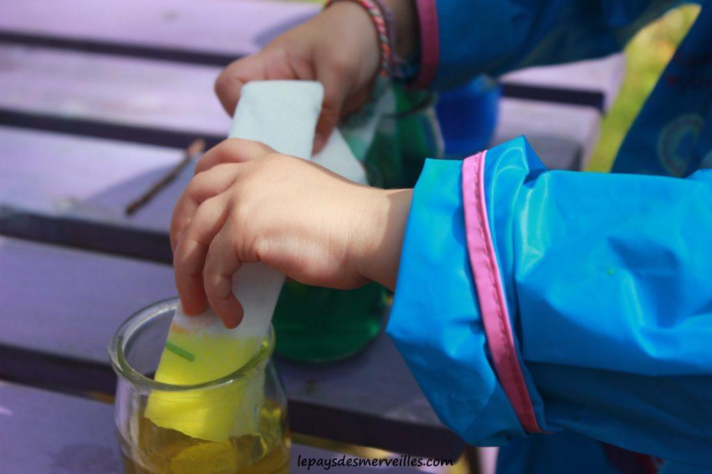 expérience colorée colorants (5)