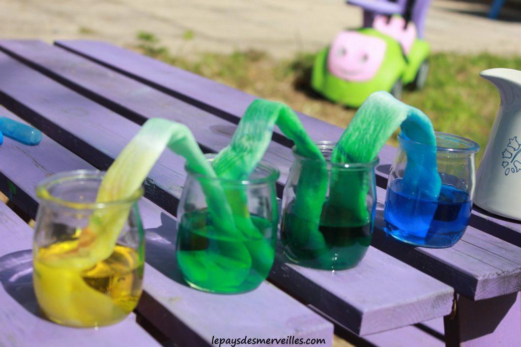 expérience colorée colorants (6)