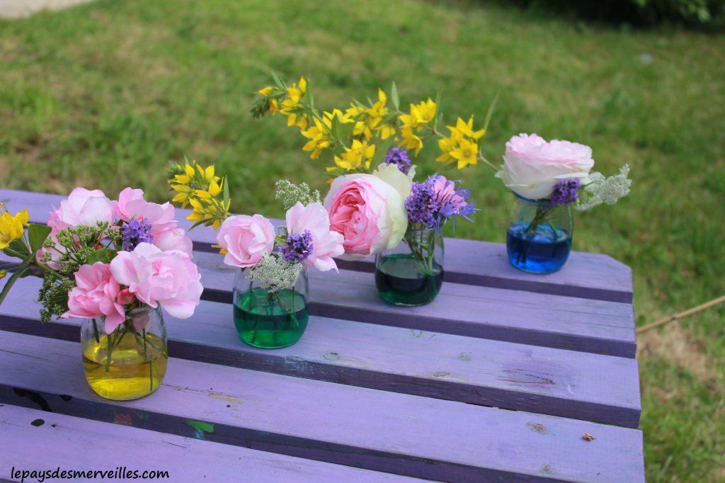 fleurs colorées 230614 (2)