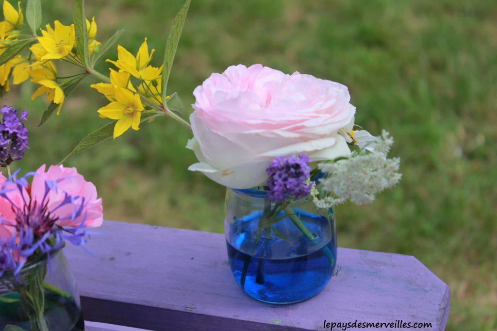 fleurs colorées 230614 (3)