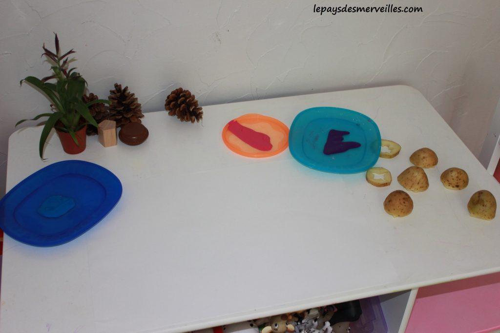 Des tampons avec des pommes de terre (1)