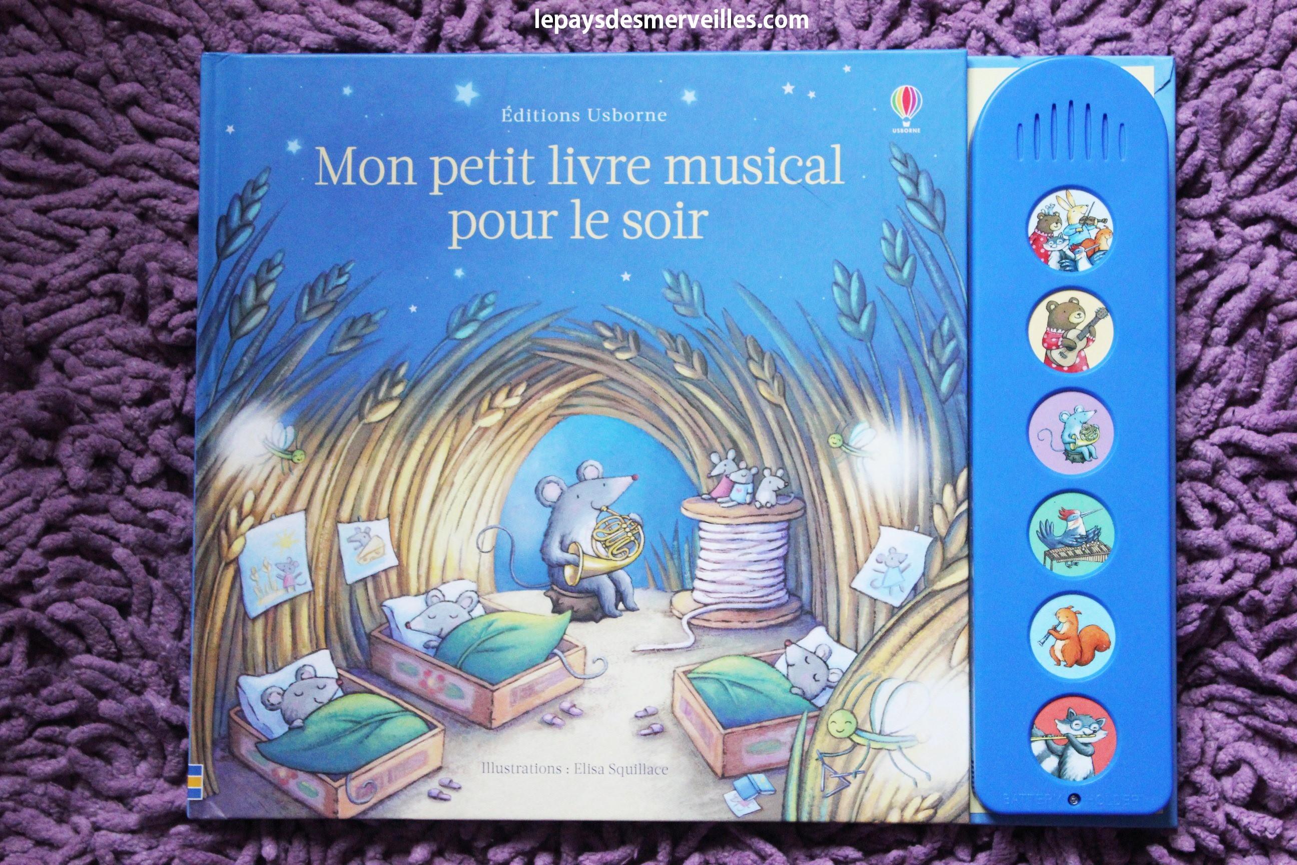 Mon Petit Livre Musical Pour Le Soir Usborne Chut Les