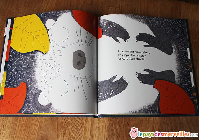livre documentaire enfant hibernation