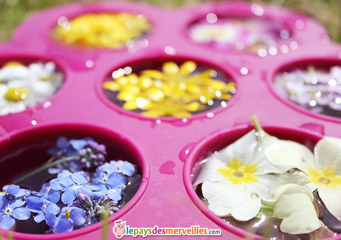 Moule pour glaçons de fleurs