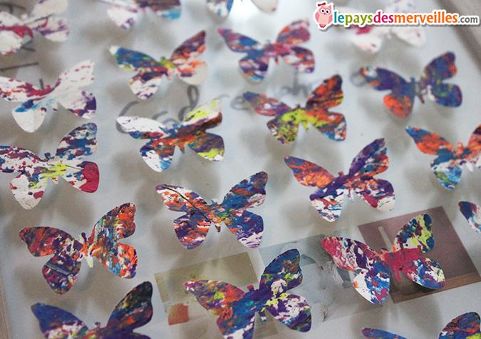 papillons perforatrice
