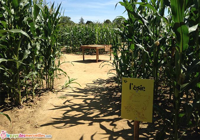 labyrinthe maïs caen
