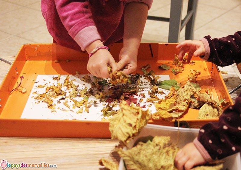 activité automne feuilles mortes