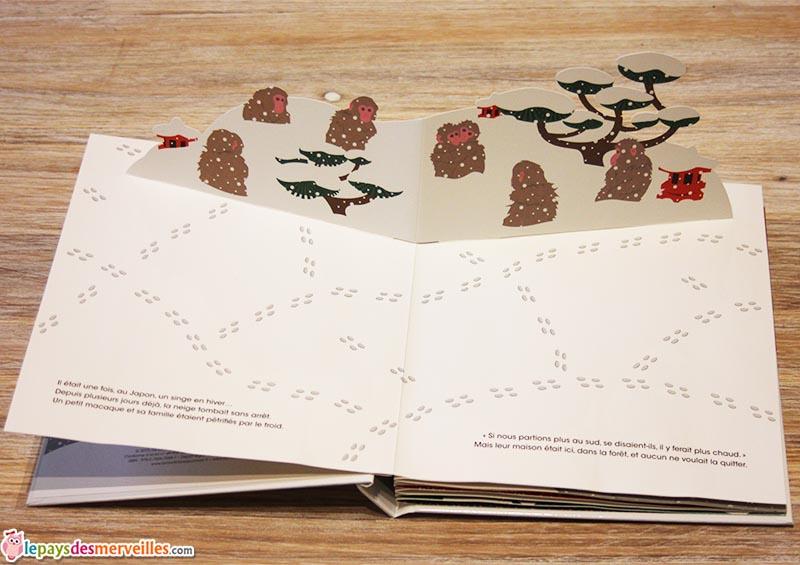 Un singe dans la neige un livre anim par elmodie - La martiniere jeunesse ...