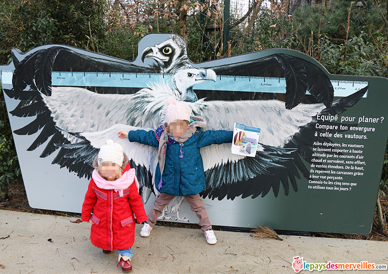 animation pour les enfants au zoo de Vincennes