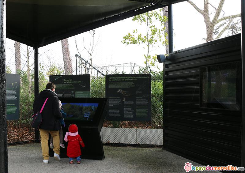 ecran tactile et intéractif du zoo de paris