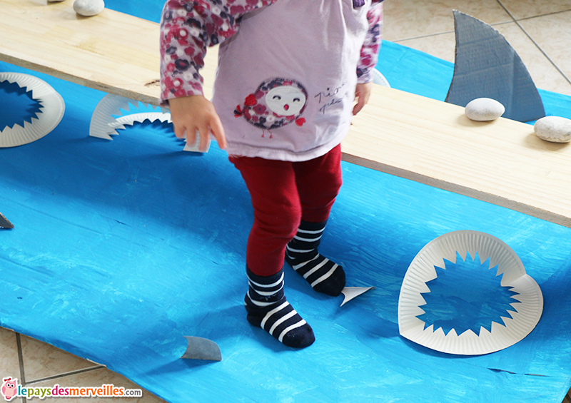 requin activite