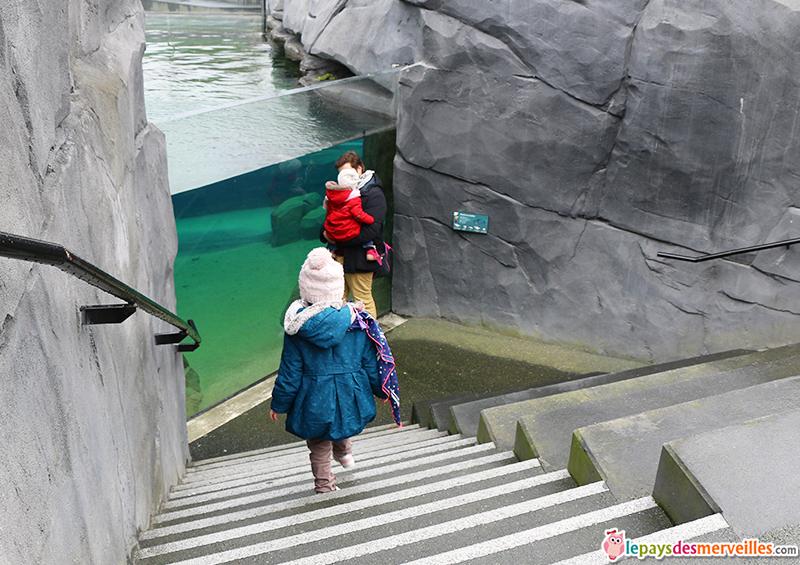 zoo de paris aquarium