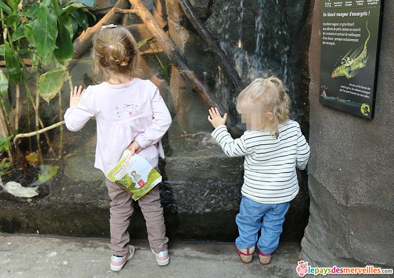 Enfants au zoo de Vincennes