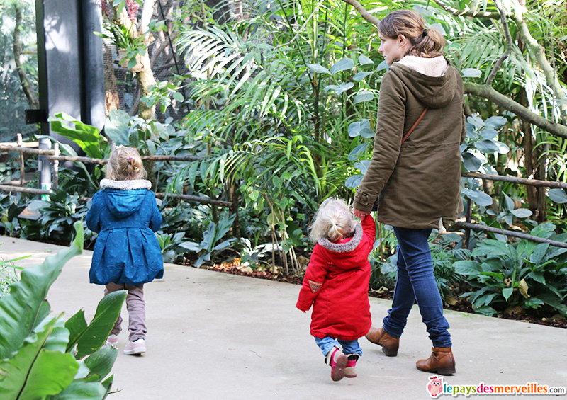 zoo de vincennes serre