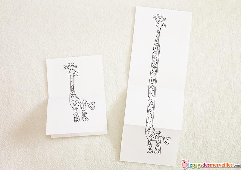 dessin girafe avant apres