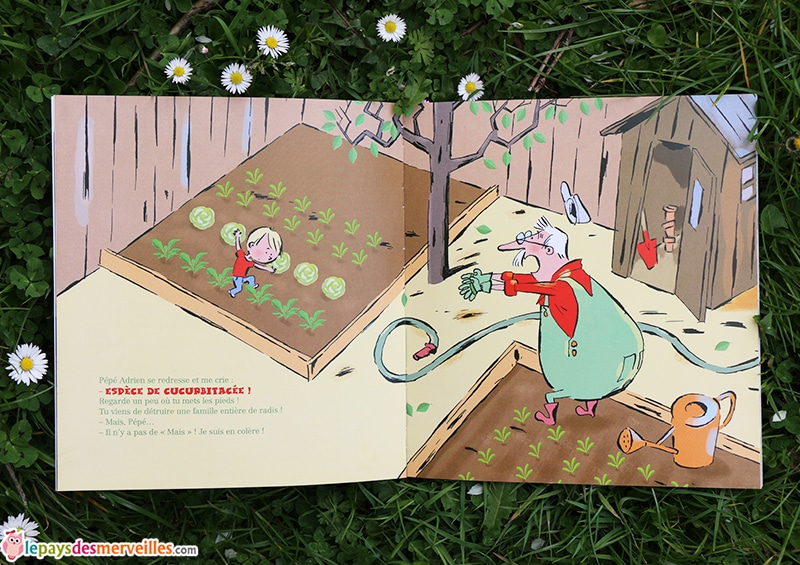 espece de cucurbitacee bouquet d'histoires Pere Castor (1)