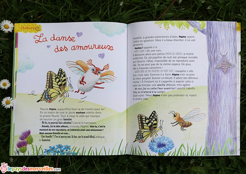 histoire revue petite salamandre