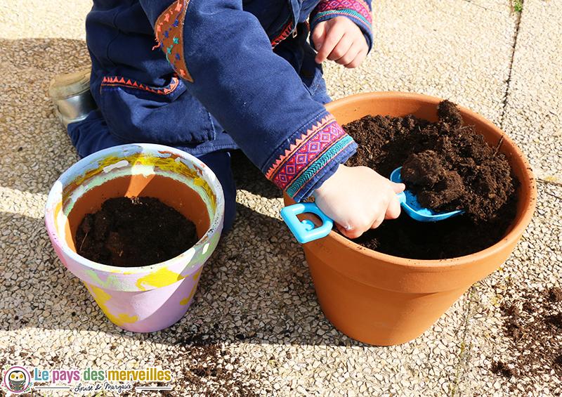 plantation enfant fleurs annuelles