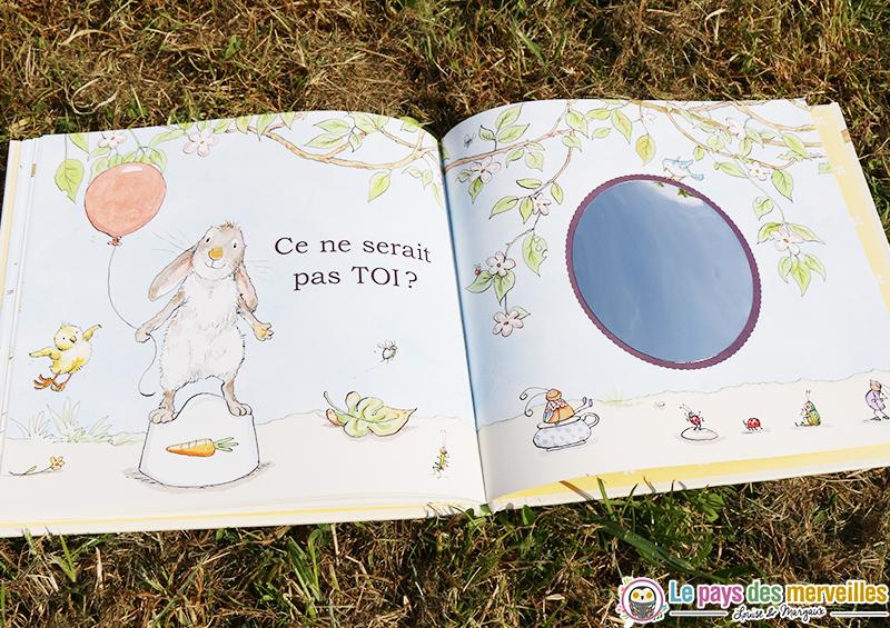 livre proprete miroir