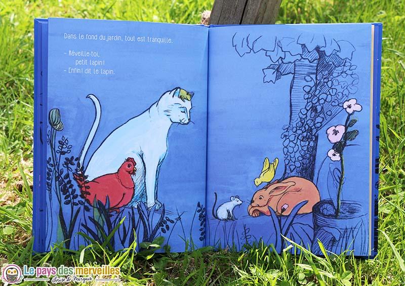 livre jeunesse animaux