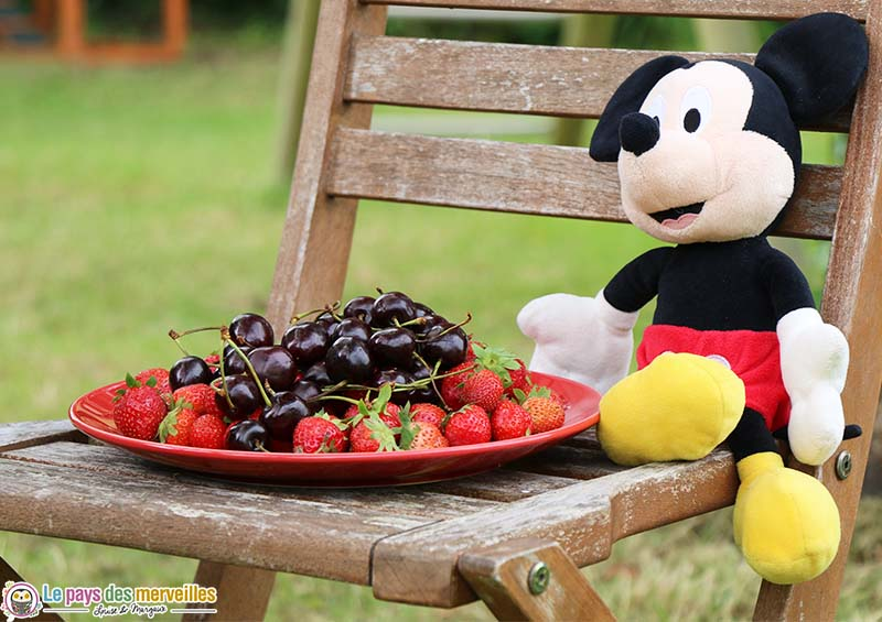 fruit deco table mickey