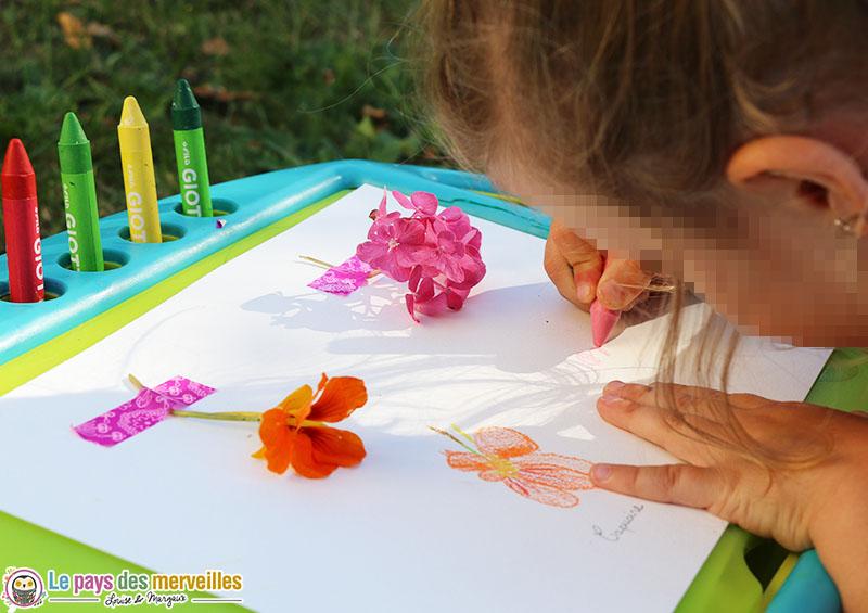 dessiner la nature