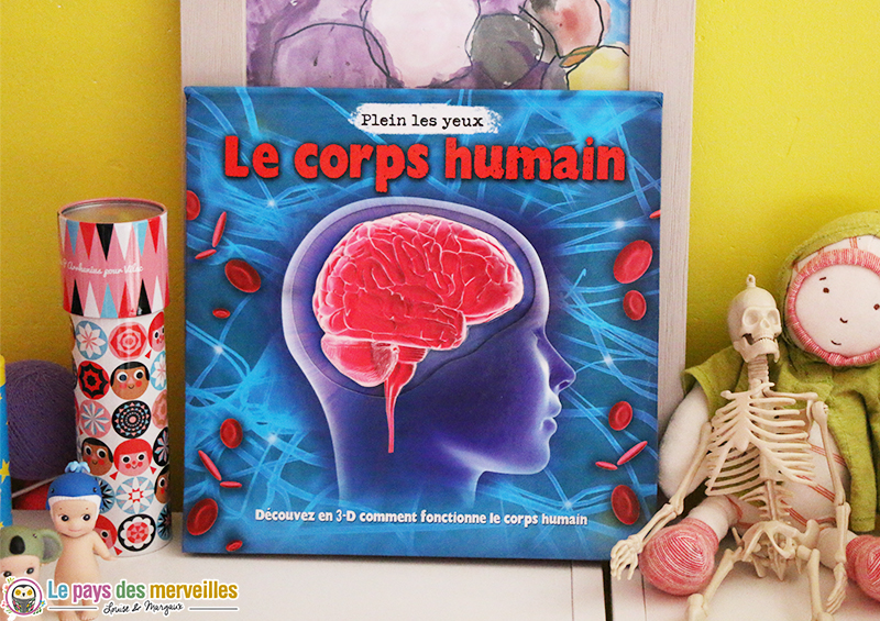 Le corps humain livre documentaire 3d aux ditions millepages for Interieur corps humain