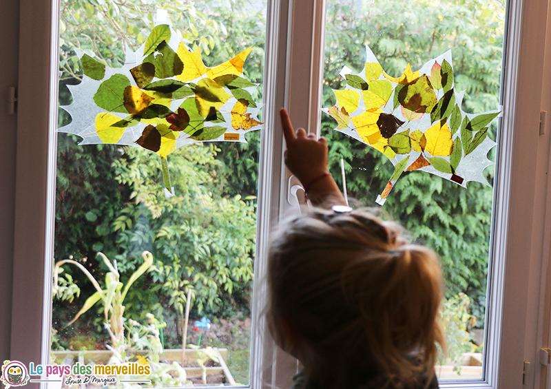 attrape-lumiere-feuille-automne