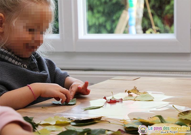 collage-feuille-arbre-papier-adhesif