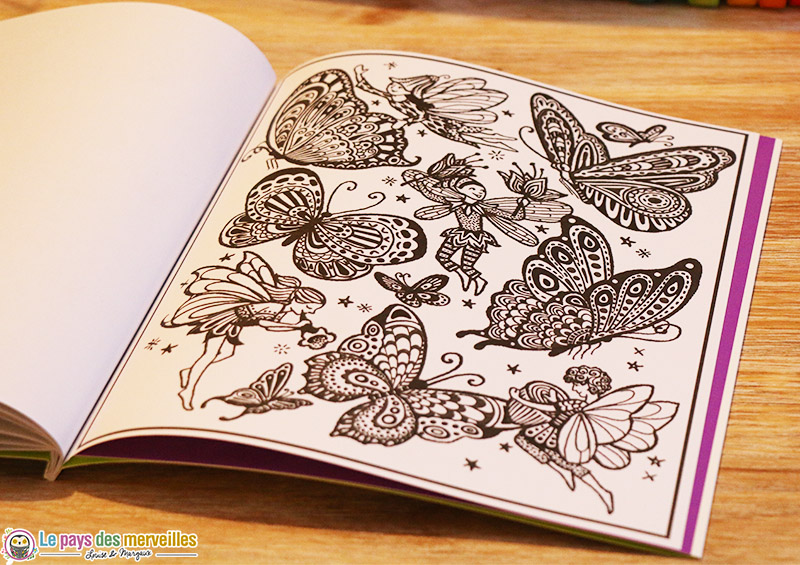 peinture magique fee papillons