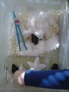 bac sensoriel neige