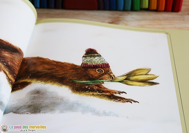 Illustration d'un écureuil dans la neige avec un crocus