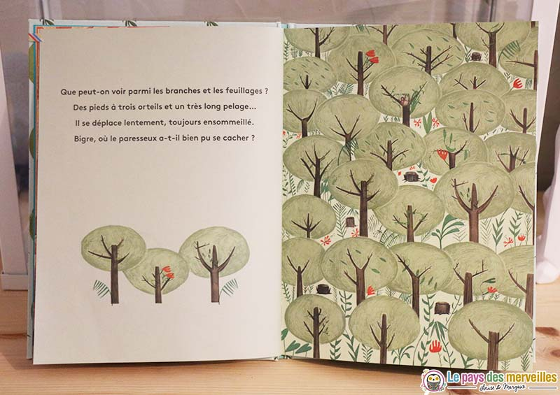 livre cherche et trouve sur le thème de la nature