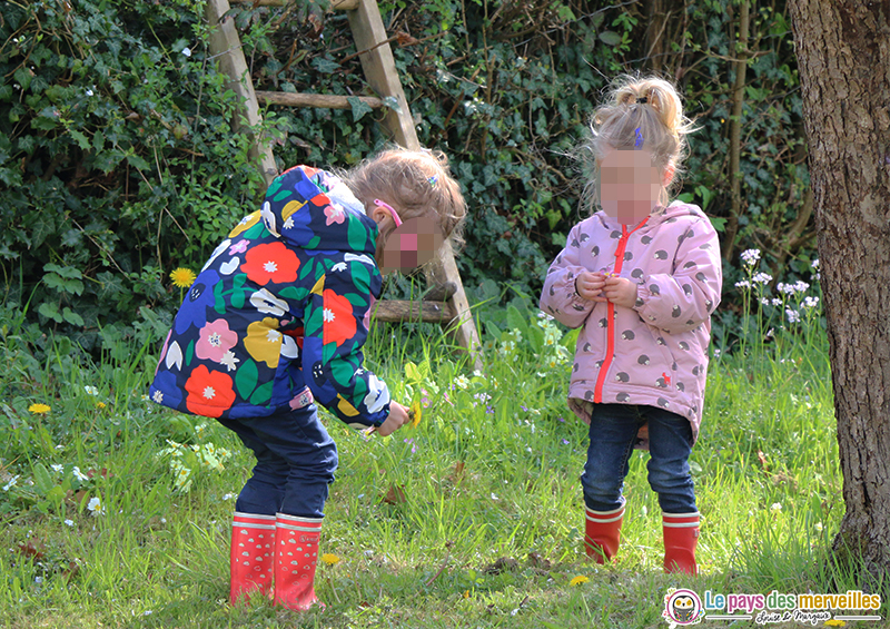cueillir des fleurs pour un bricolage de printemps
