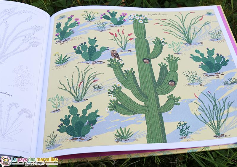 illustration le jardin de cactus