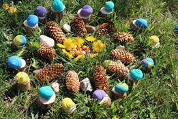 mandala avec des coquilles d'escargots colorées