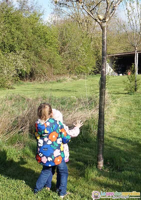 chasse aux oeufs de Pâques dans la nature en Normandie