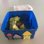 boite décorée pour les escargots