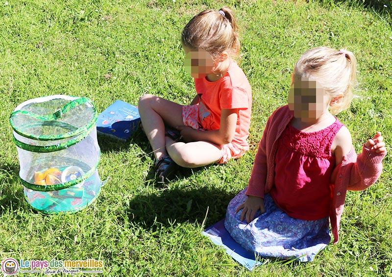 kit d'élevage de papillons, jour de la libération