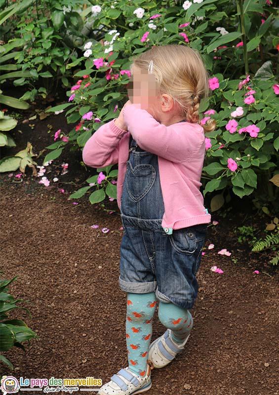 visite de la serre aux papillons Honfleur