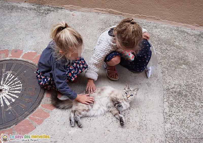 enfants et chat