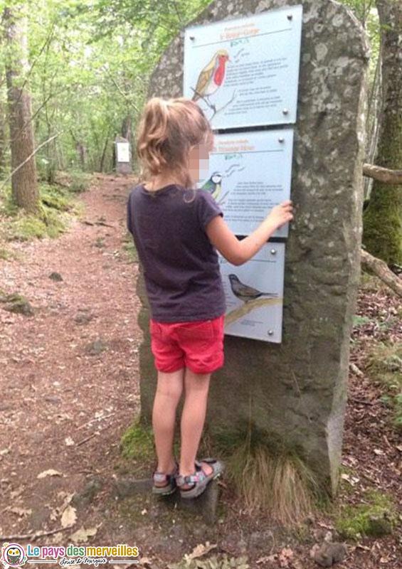 sentier pédagogique Le théâtre de la forêt à Volvic